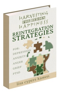 Reintegration Strategies Book